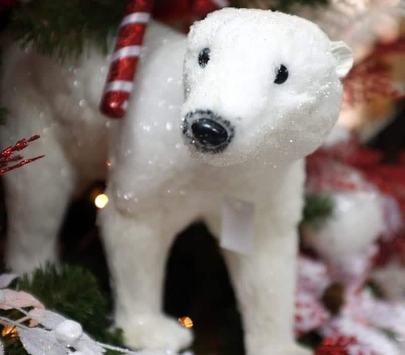 ursinho de natal na xmas decor