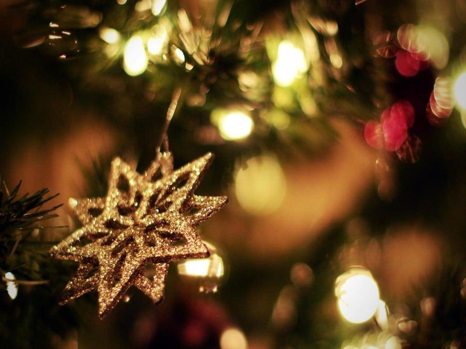 arvores de natal xmas